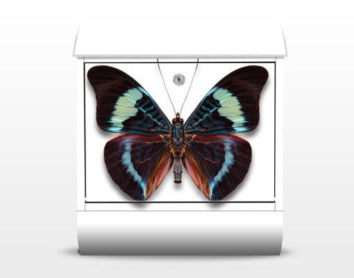 Poštová schránka Motýl 299ac43bd2