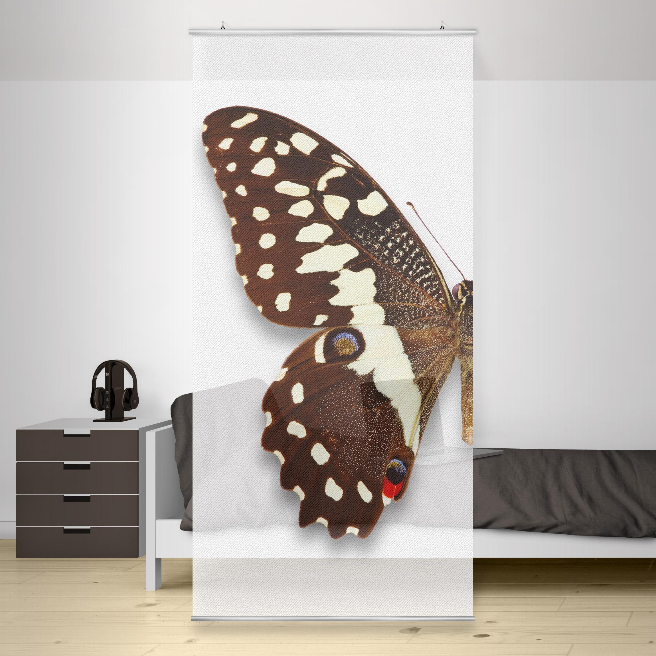 ... Moderný deliaci Paravan motýľ e4c501802c
